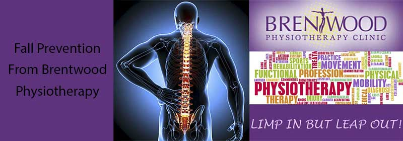 fall prevention back pain brentwood physio northwest