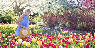 Gardening-Tips